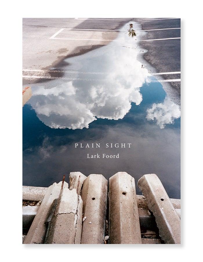 Image of Lark Foord - Plain Sight