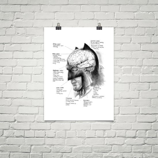 Image of Neuroscience of Batman - Art Print