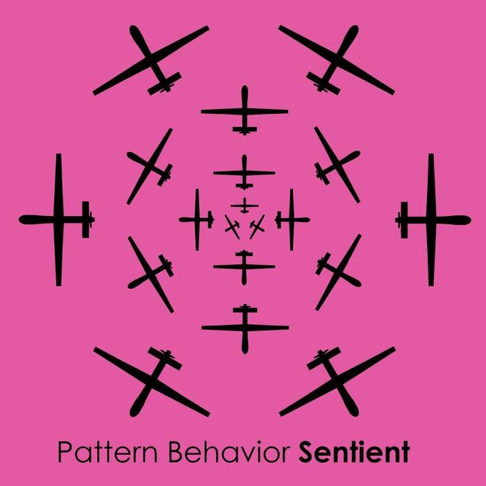 Image of Pattern Behavior-Sentient Limited Edition CD