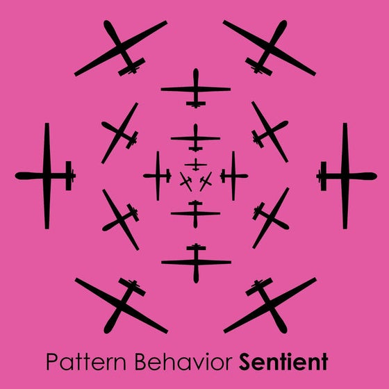 Image of Pattern Behavior​-​Sentient Limited Edition CD