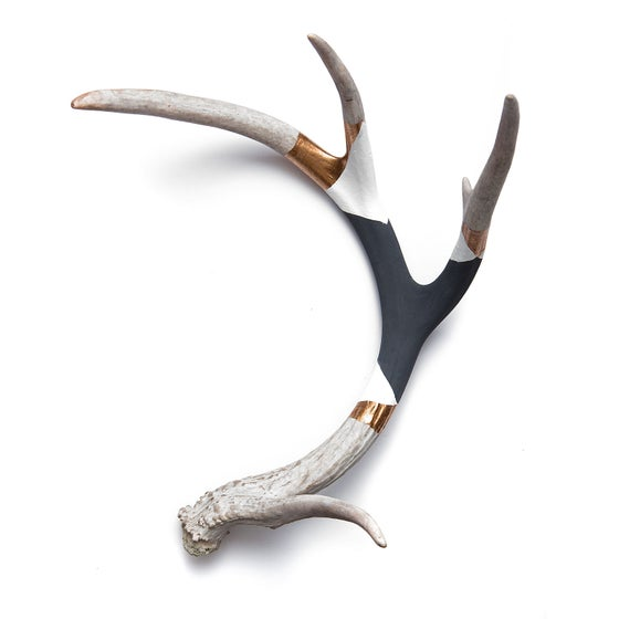 Image of BANDED ANTLER // NIGHT SKY