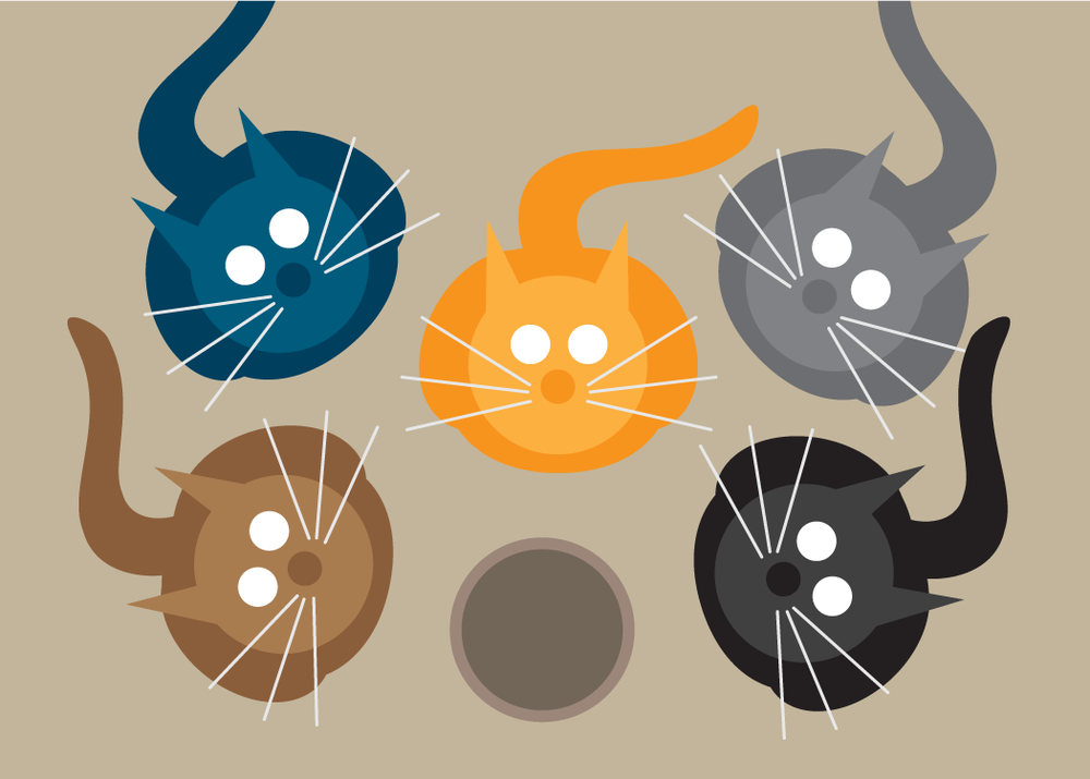 Mulit Cat Collection