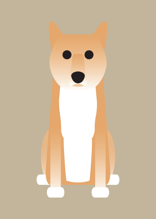 ShetlI, Shiba Inu, Springer Spaniel Collection