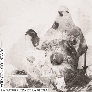 """Image of JUVENTUD PODRIDA - LA NATURALEZA DE LA BESTIA 7"""" (BROWN MARBLED VINYL)"""