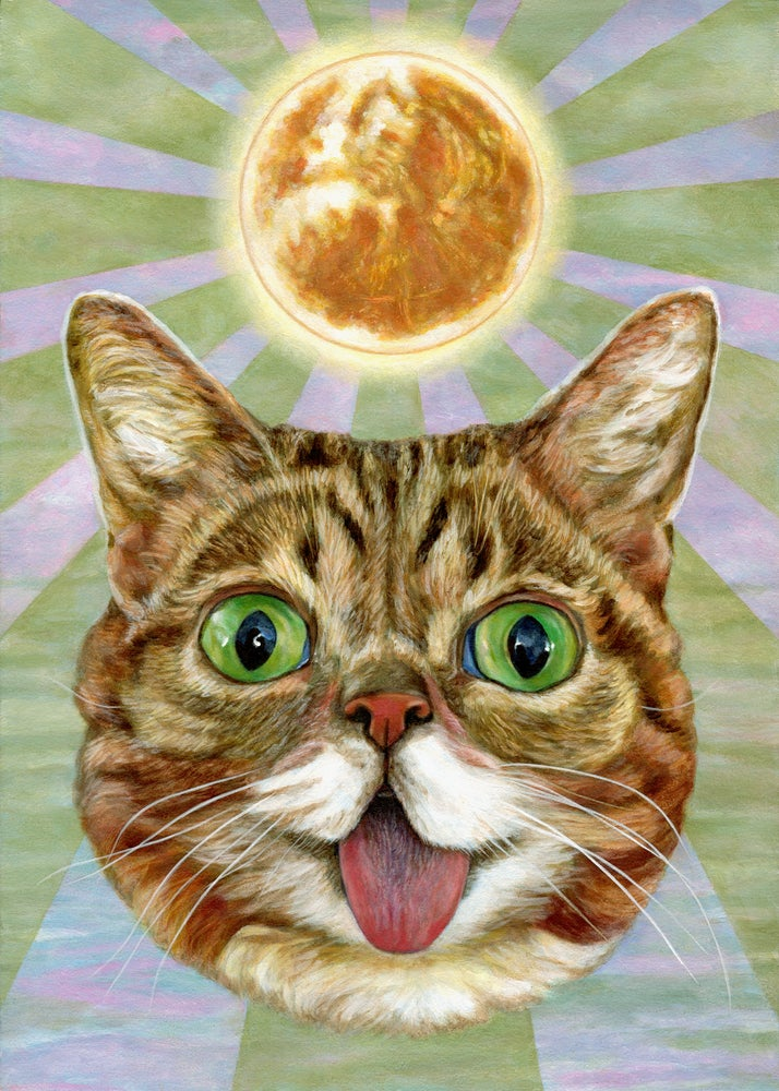 Image of Solar BUB