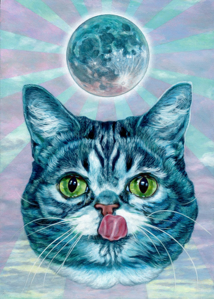 Image of Lunar BUB