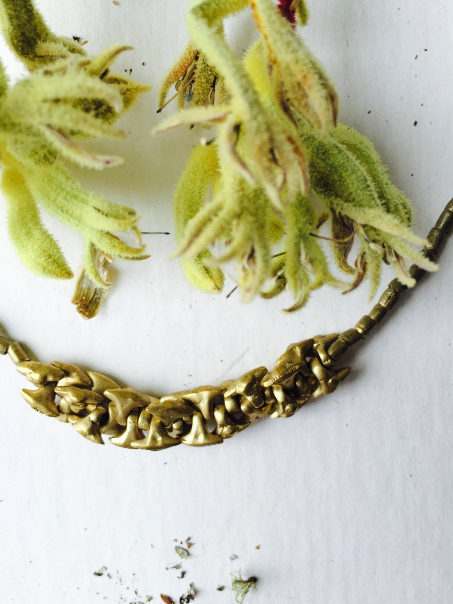 Image of Sloughgrass Necklace