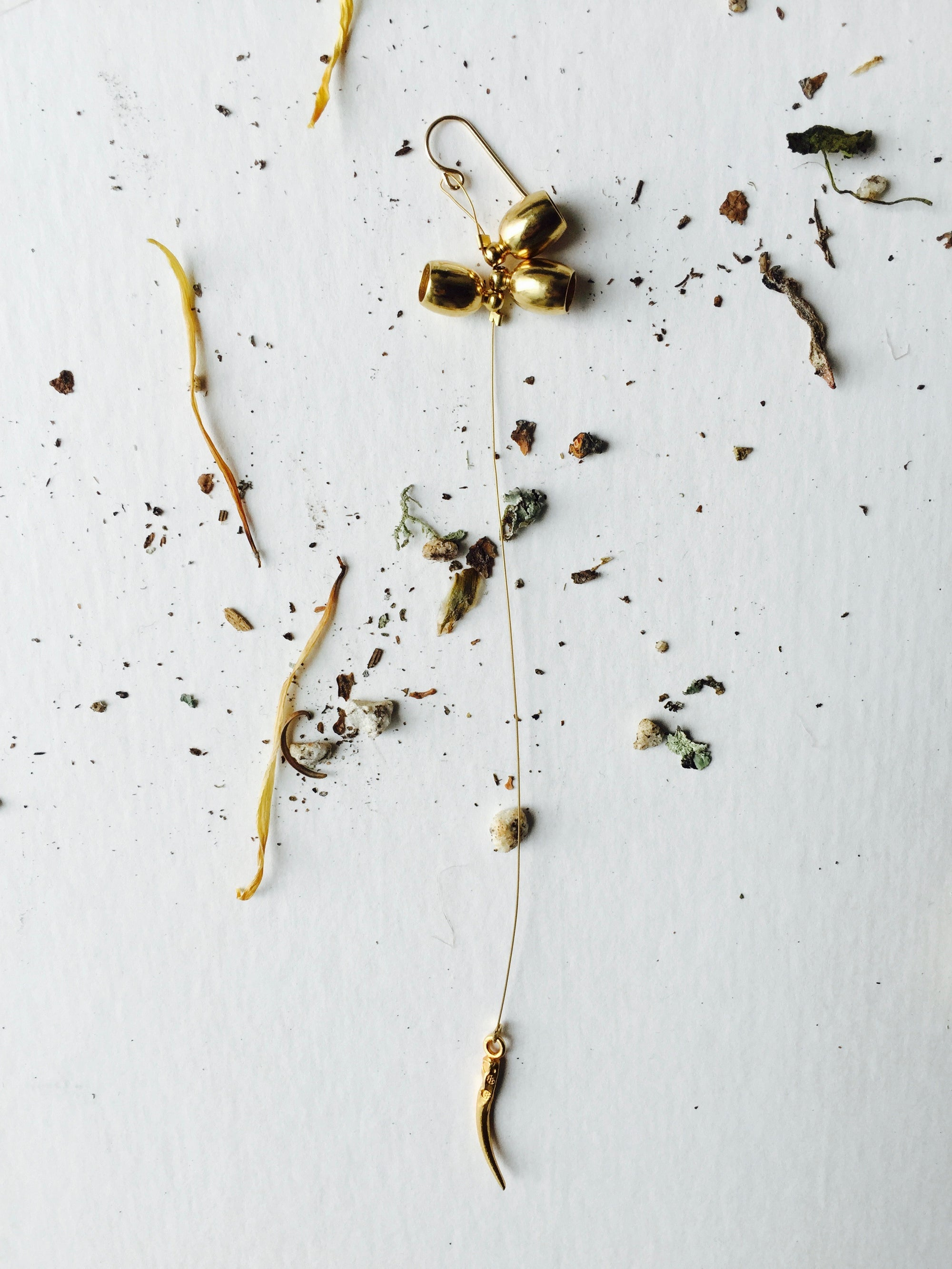 Image of Single seed capsule Earring