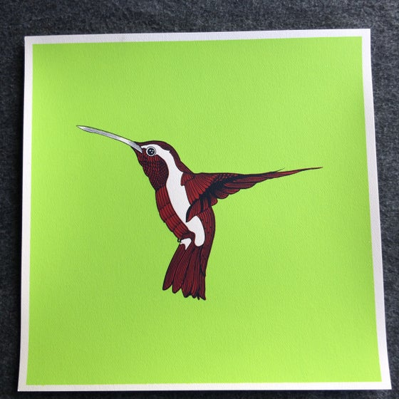 Image of Humming Bird AP print