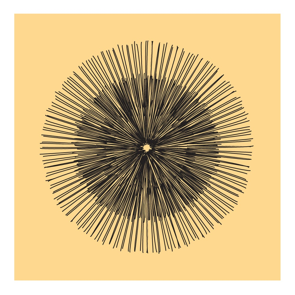 Image of Flowerlines - Taraxacum