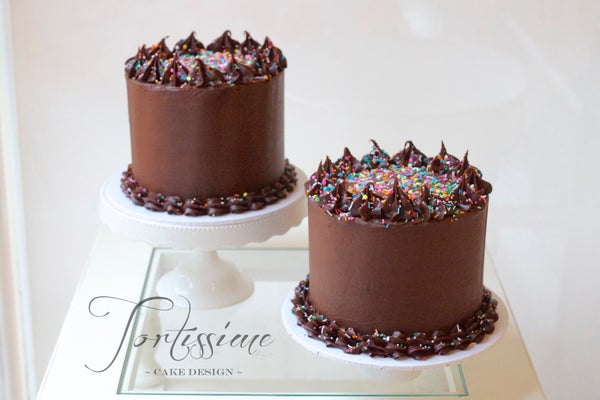 Image of ~ Chocolate Sprinkle Celebration Cake ~