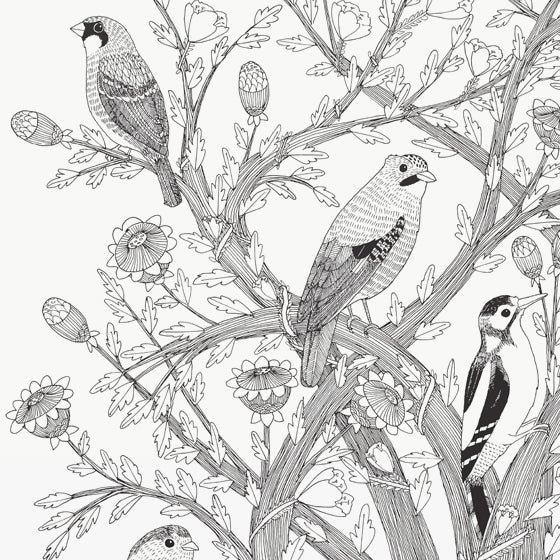 Image of Large Print: 7 Birds