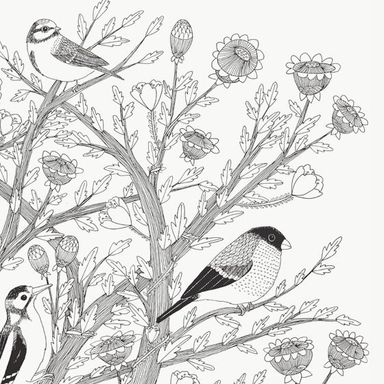 Image of Large Print: 7 Birds