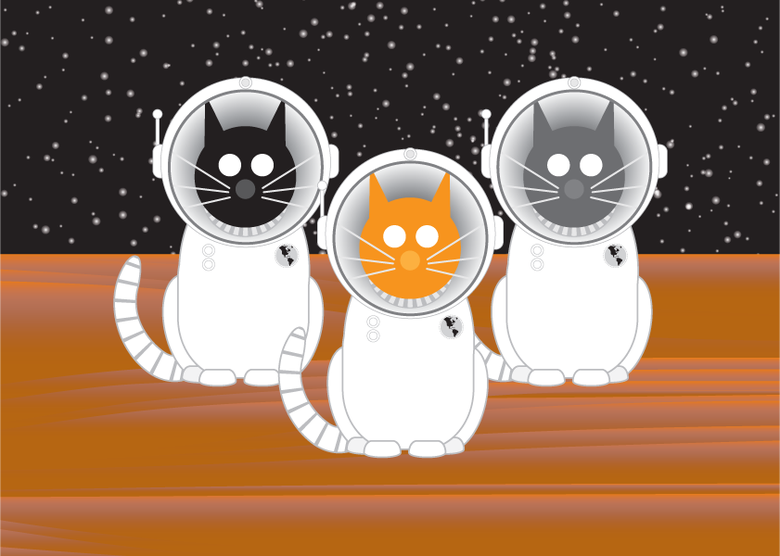 Image of Space Cat Collection