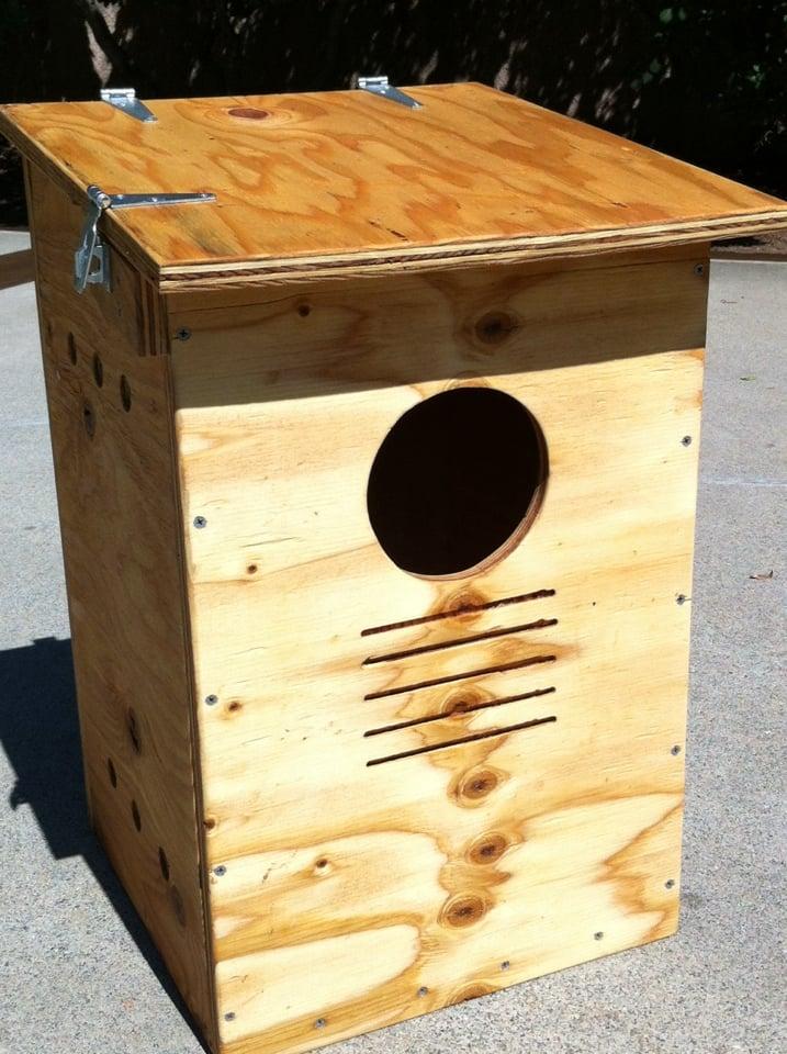 Image of Owl Nesting Box