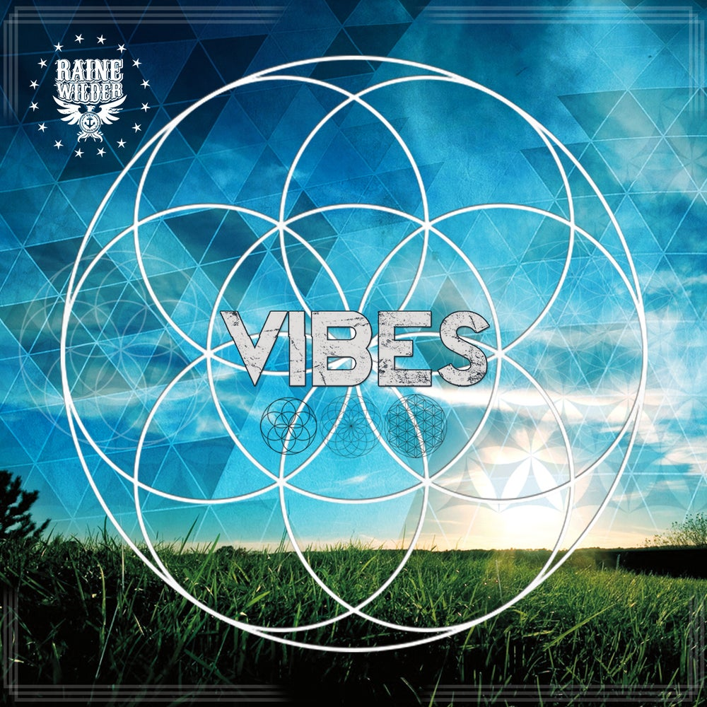 Image of VIBES CD