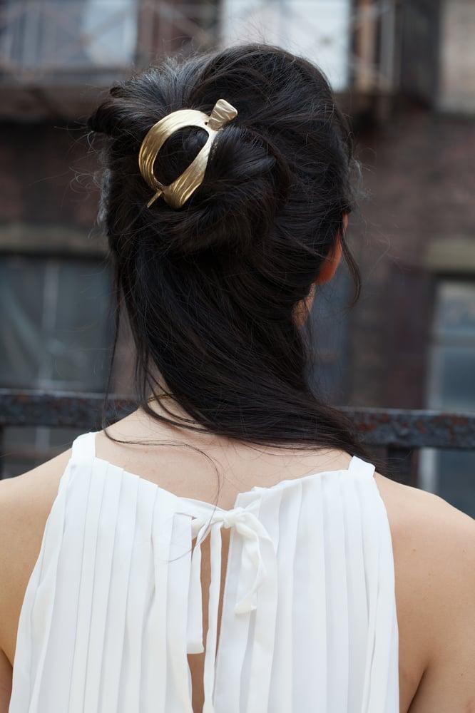 Image of Titan Hairslide