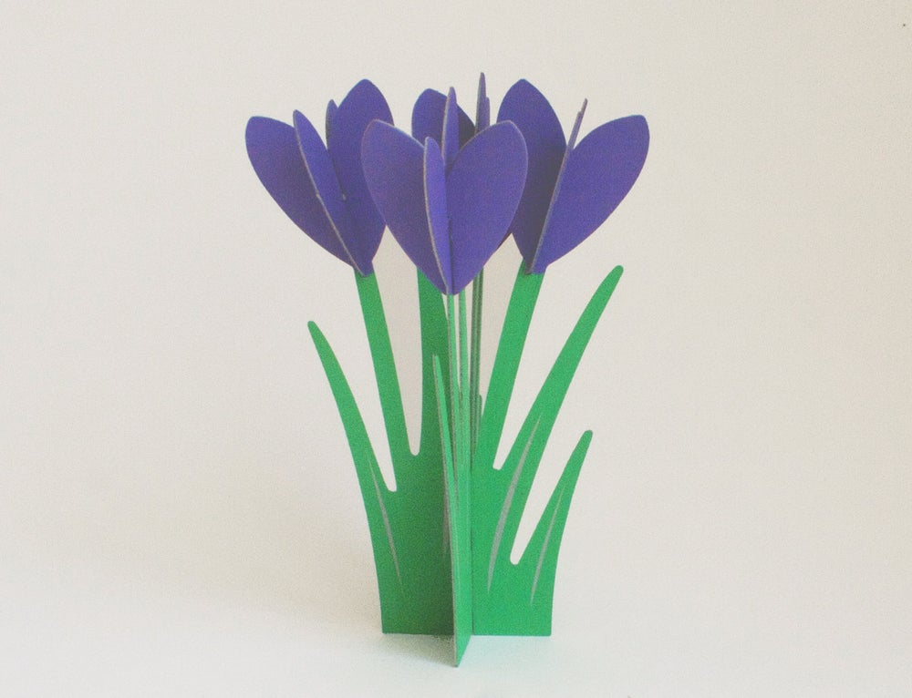 Image of 2 x CUT&MAKE - CROCUS Cards