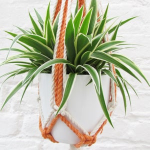 Image of Macramé Plant Hanger - Orange