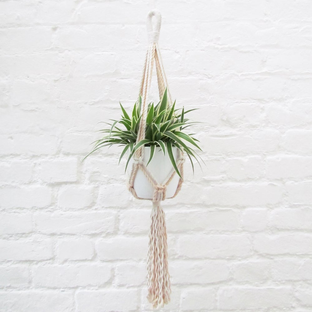 Image of Small Macramé Plant Hanger - Peach