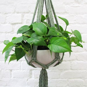Image of Large Ombre Plant Hanger - Spruce Green