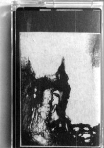 "Image of Stillborn Fawn - ""Norn"""