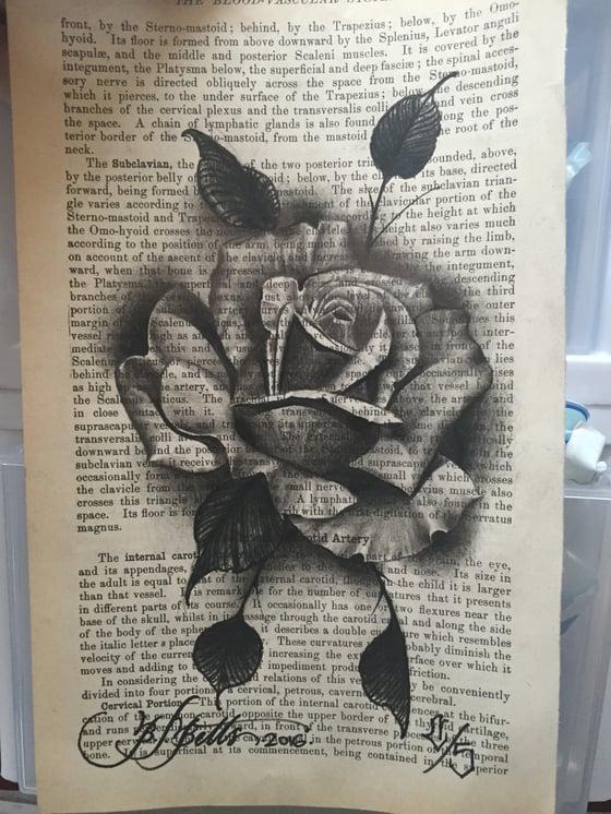 Image of Original rose artwork