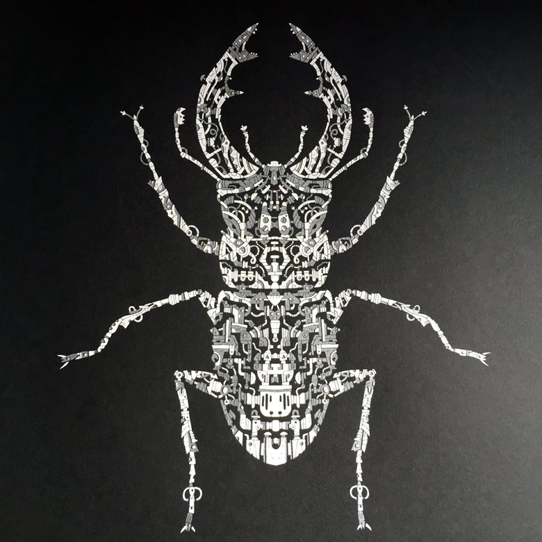 Image of Limited Edition Beetle Screenprint