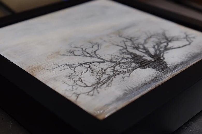 Image of Dead Oak (2015)
