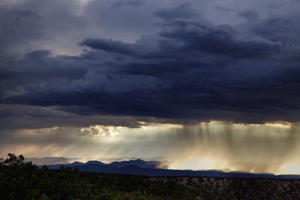 Image of Desert Rain