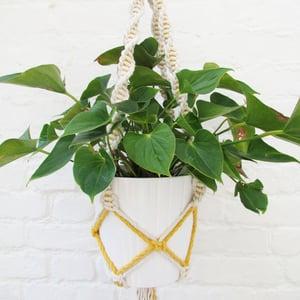 Image of Spiral Macrame Plant Hanger - Yellow