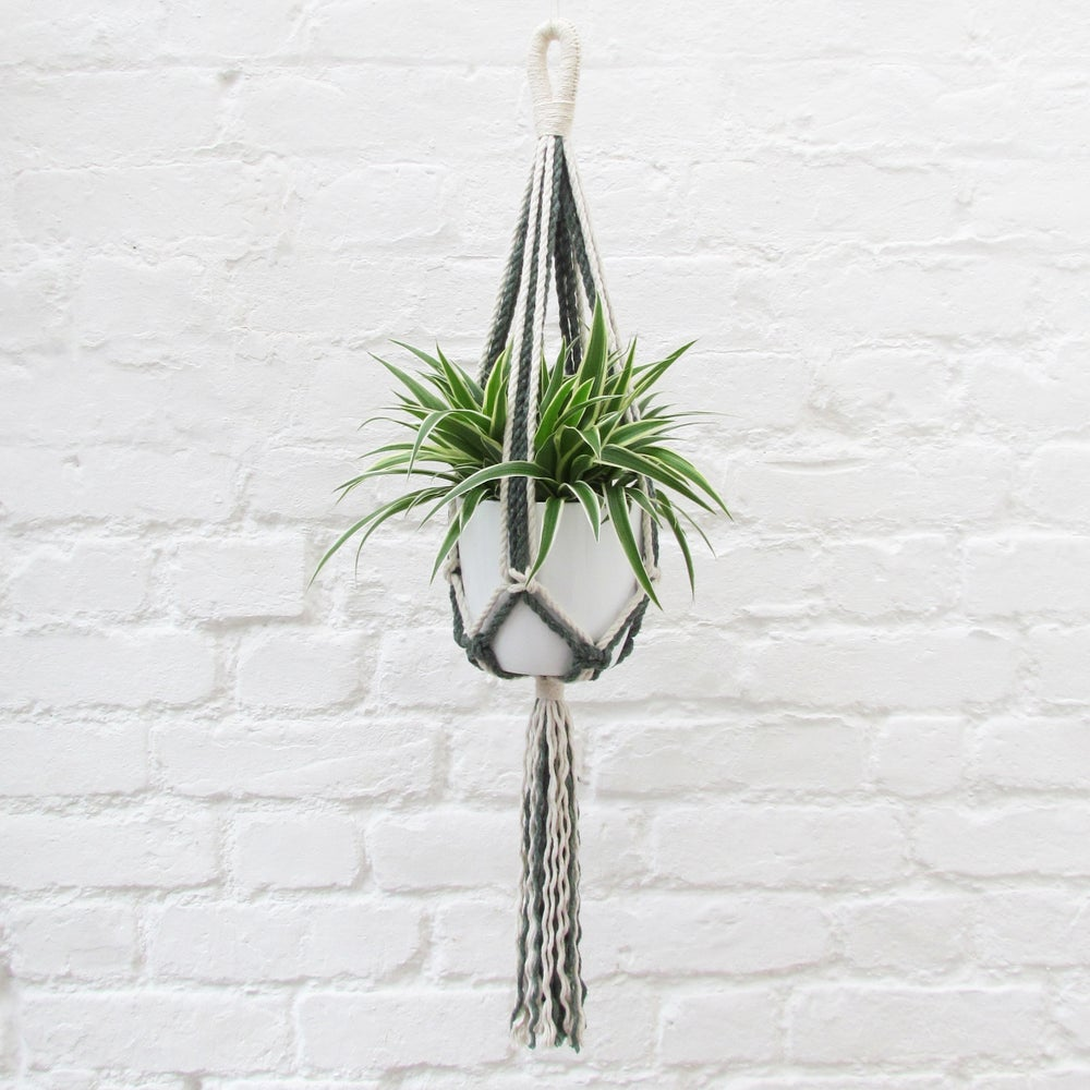 Image of Macrame Plant Hanger - Spruce Green