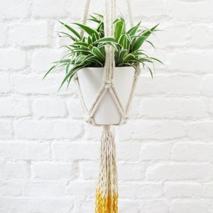 Image of Ombre Macrame Plant Hanger - Yellow