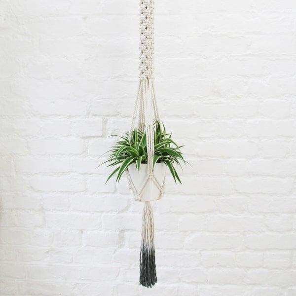 Image of Ombre Macrame Plant Hanger - Spruce Green
