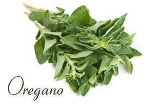 Image of Oregano White Balsamic Vinegar