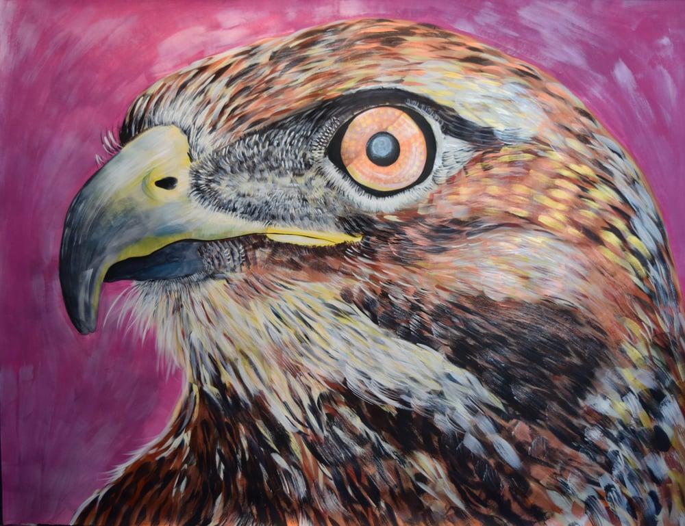Image of Original Hawk painting by Natalie Wright Large scale Wildlife Art