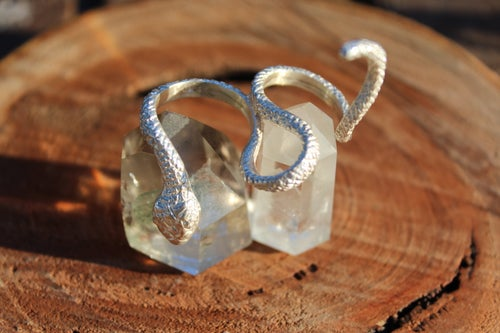Image of Double Silver Snake Ring