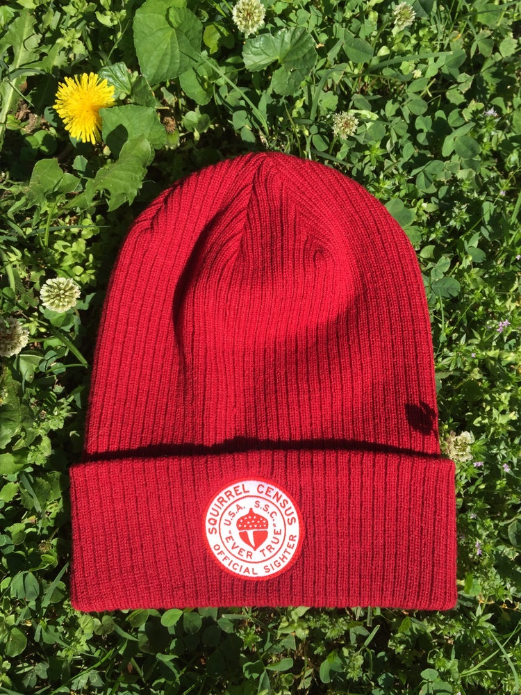 Image of **Official Squirrel Census Team Member Beanie**