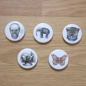 Image of Vintage Illustration Button Badges & Pocket Mirrors
