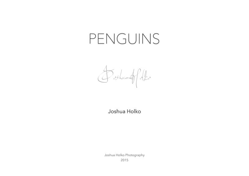 Image of Penguin Portfolio