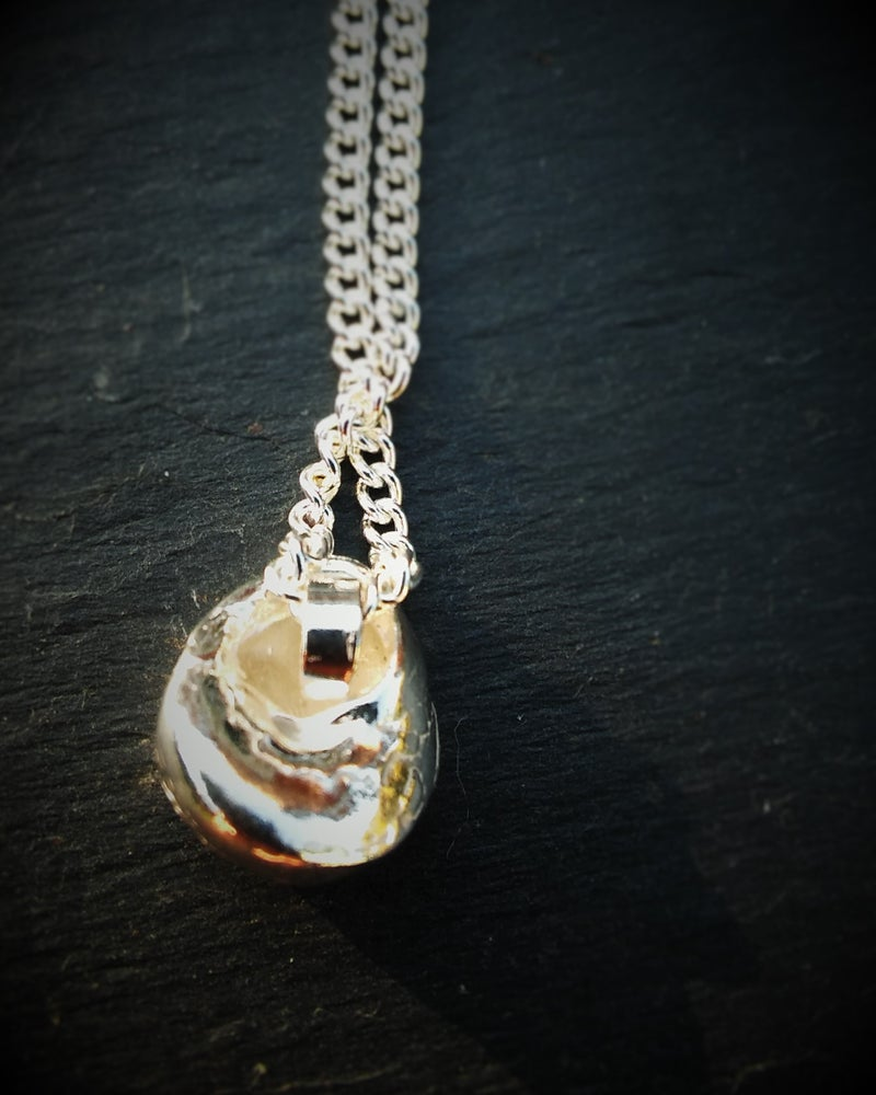 Image of Silver Periwinkle Shell Pendant