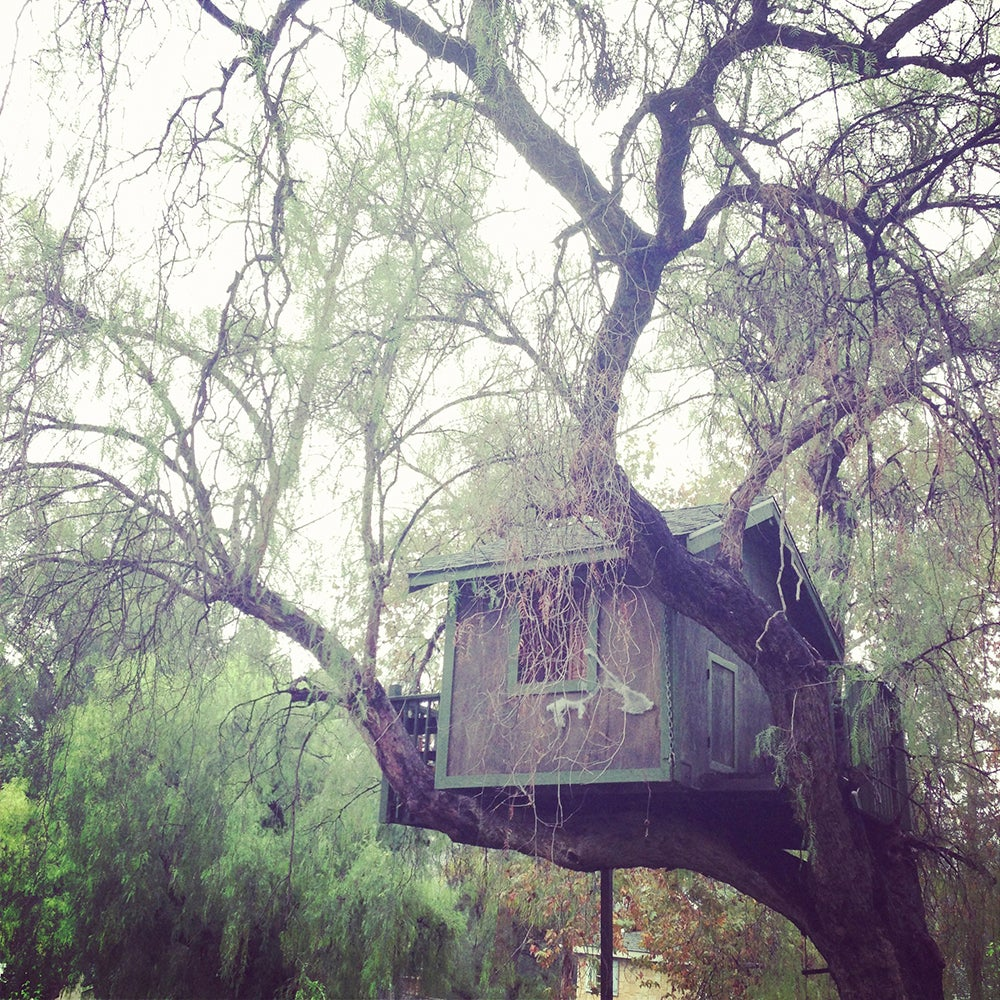 Image of Treehouse