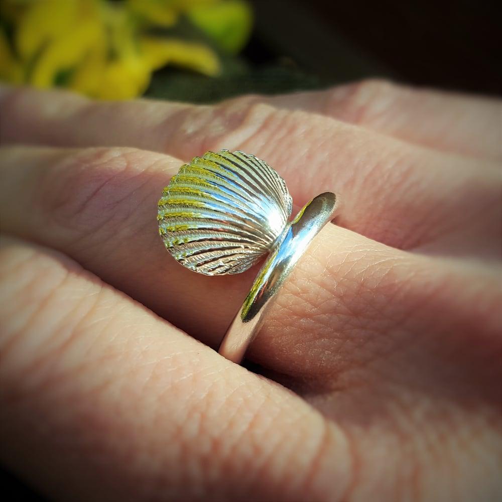 Image of Dorset Shell Rings