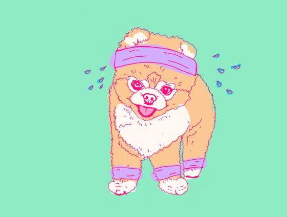 Image of Custom Pet Portrait