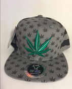 Image of  GREEN GRAY STRIPE KUSH SNAP BACK HAT