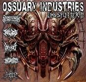 Image of Limb Splitter 2 Compilation ft. Ingurgitate, Hod, Iniquitous, Locusta, Demoniacal Genuflection
