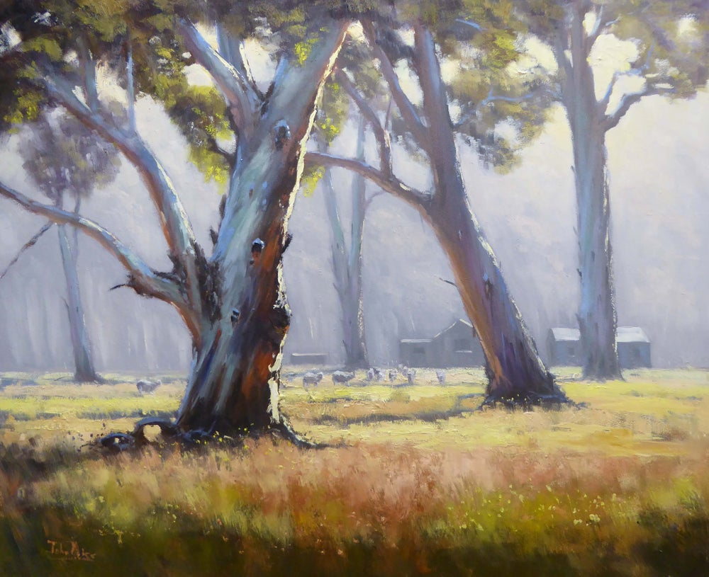 Image of Morning Mist