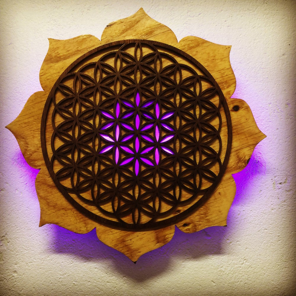Eternalglyphics Lotus Flower Of Life Led