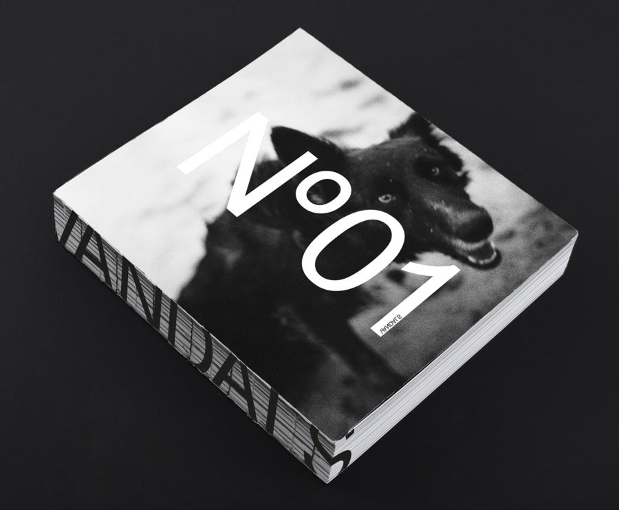 Image of VANDALS - VOLUME #1