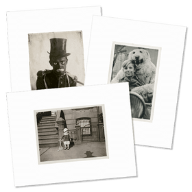 """Image of 6 cartes postales <br>de la collection<br> """"vernaculaire !"""""""